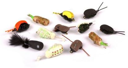 Снимка на NASH Zig Bugs